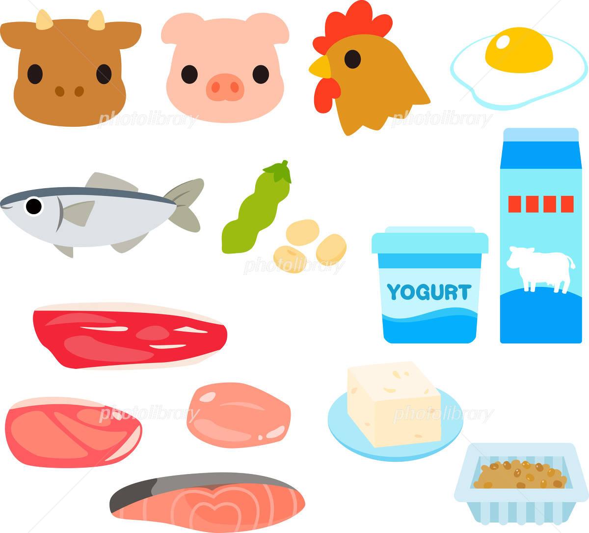 「タンパク質 イラスト フリー」の画像検索結果