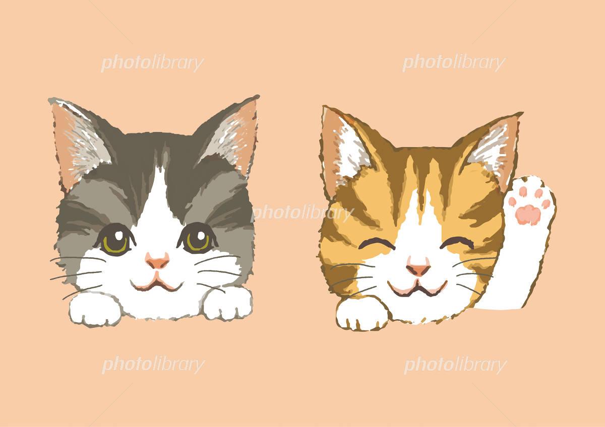 子猫イラスト イラスト素材 4815046 フォトライブラリー