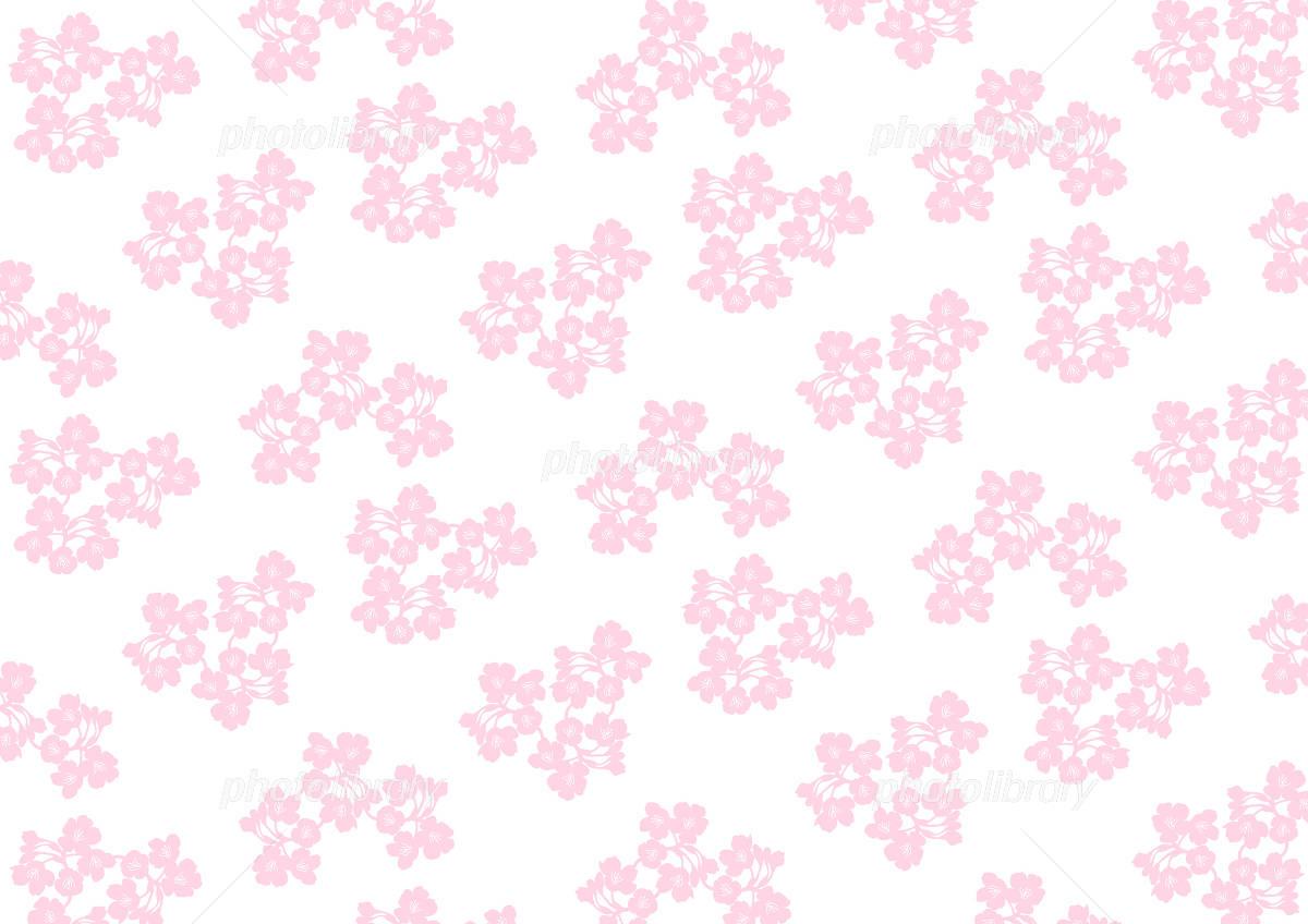 桜の花 背景 イラスト 白背景 イラスト素材 4925961 フォトライブ