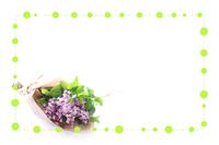 ライラックの花束のフレーム