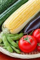 写真 A collection of summer vegetables(5116086)