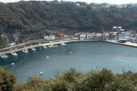 写真 Wave Harbor Port(5116140)