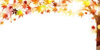 イラスト Autumn leaves(5116269)