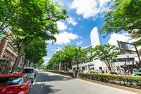 写真 Tokyo Harajuku(5116578)