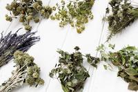 写真 Dry herb flower frame(5117396)