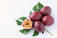 写真 passion fruit(5119265)