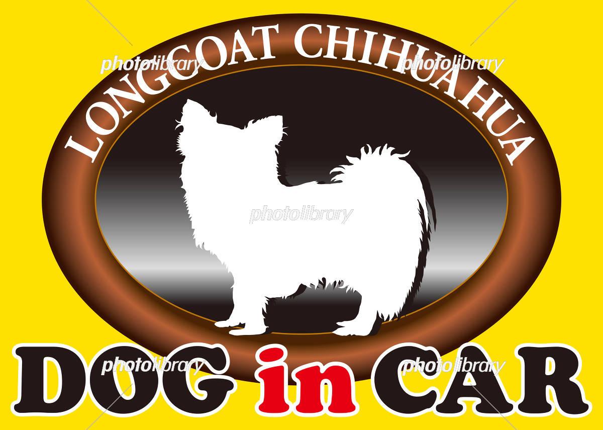 ロングコートチワワ Dogincar イラスト素材 5204580 フォト