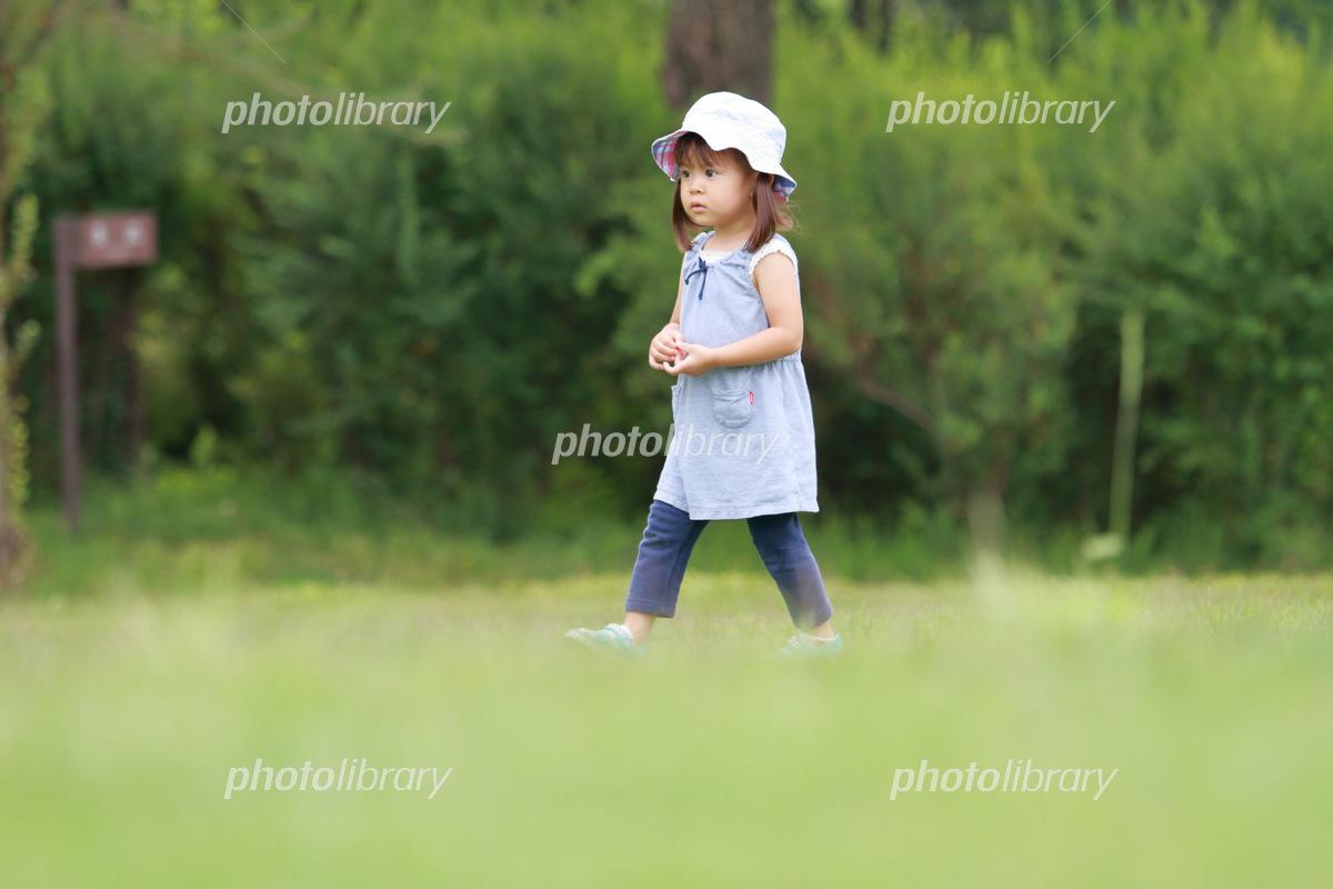 芝生の上を歩く幼児(2歳児) 写真素材