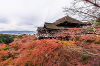 Kiyomizu Temple of Kyoto autumn leaves  Photo