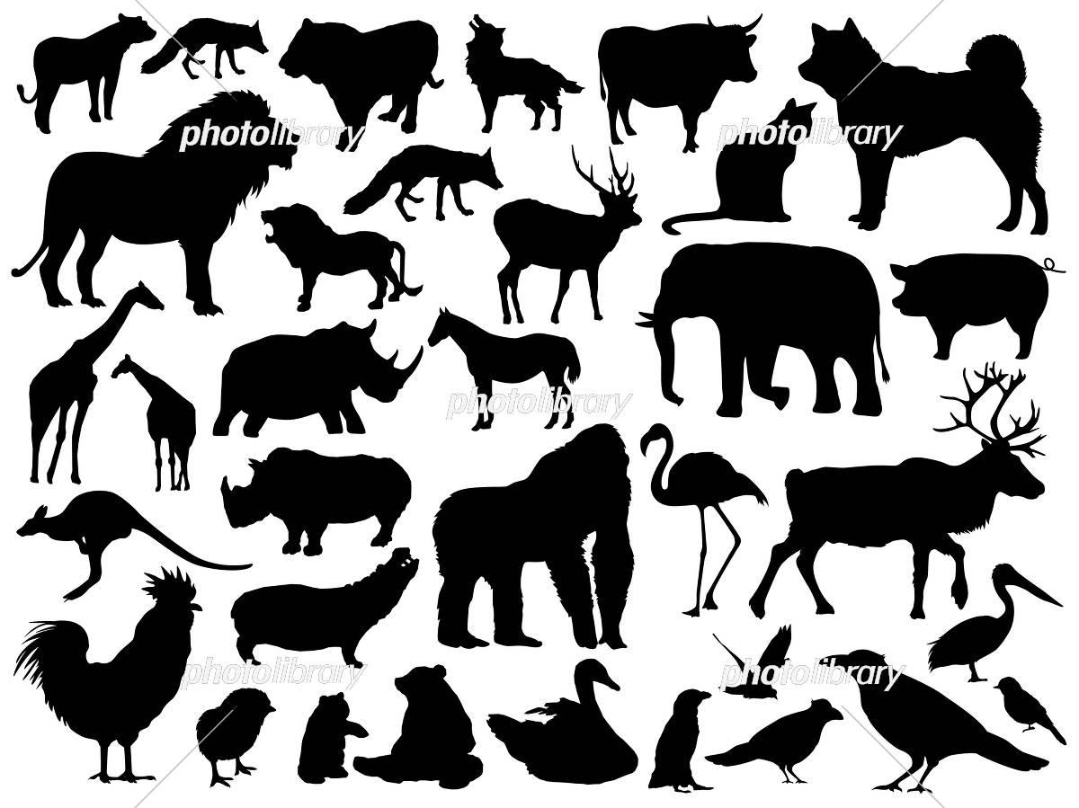 動物のシルエットイラスト イラスト素材 [ 5311336 ] - フォトライブ