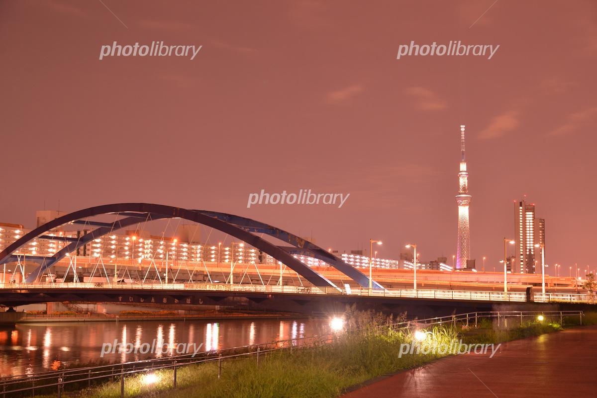 汐入公園からの夜景とスカイツリー 東京都荒川区 写真素材 5847466