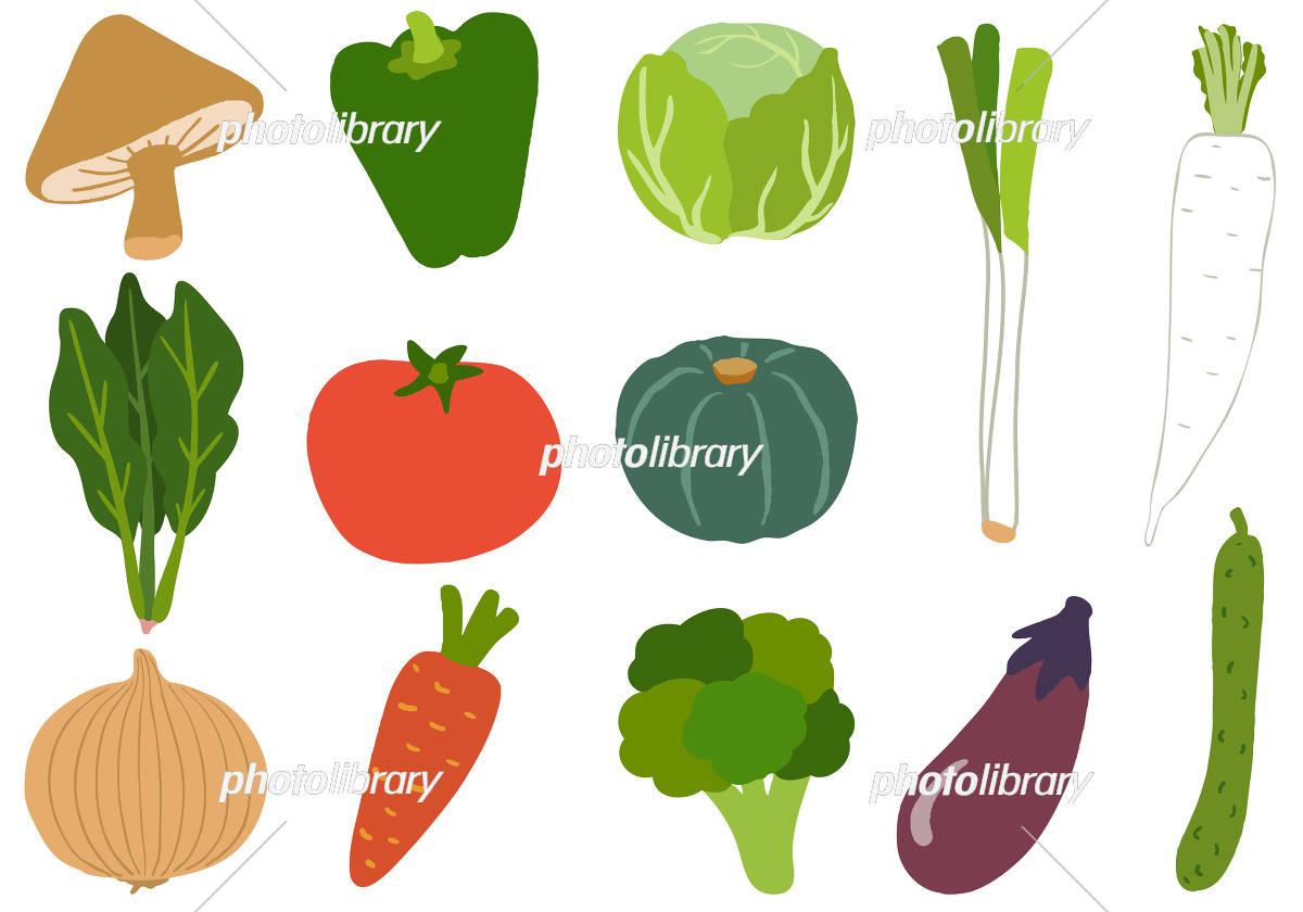 野菜 イラスト イラスト素材 5875301 フォトライブラリー Photolibrary