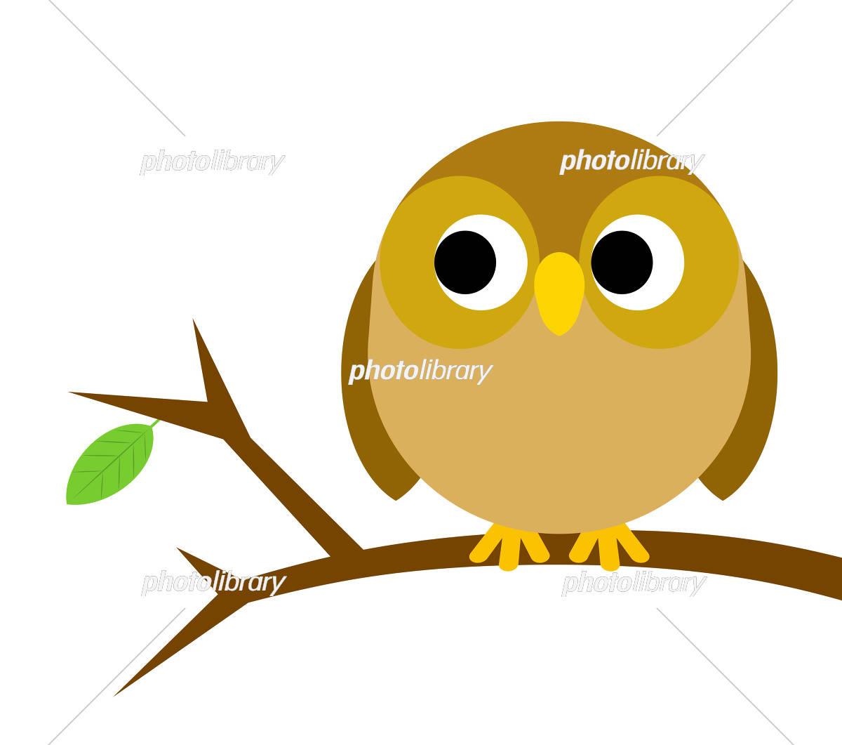 木の枝にとまるフクロウ イラスト素材 5936737 フォト
