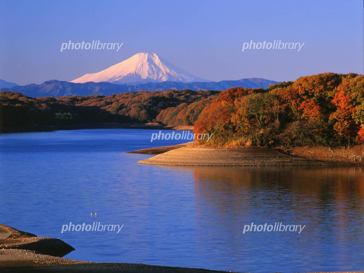 狭山湖からの富士の写真