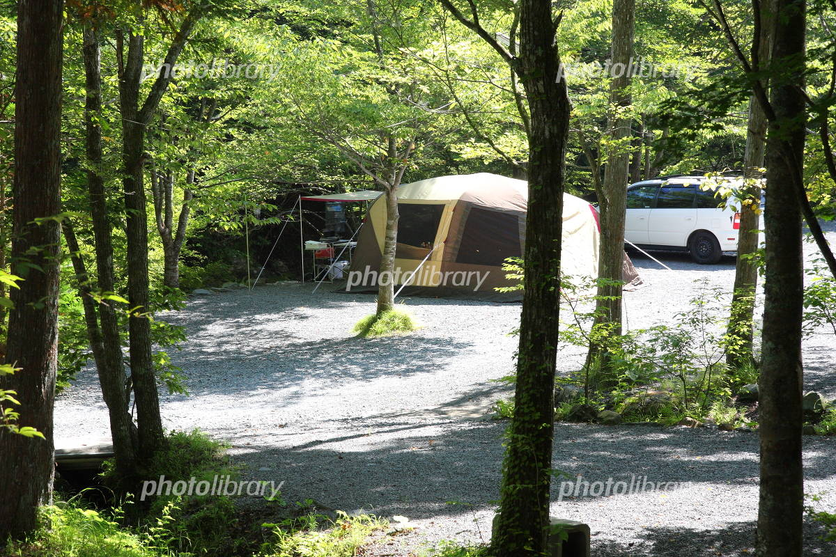 Camping in the woods Photo