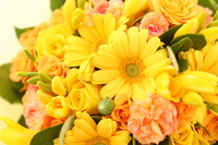 Yellow bouquet Stock photo [440348] Flower