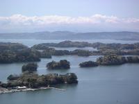 Back Matsushima Stock photo [496817] Back