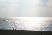 紀州の海岸