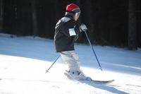 Children to enjoy the skiing Stock photo [642786] Skiing