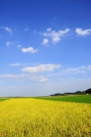 The Minoru Kanto Plain Stock photo [744166] The