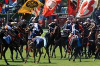 Follow Soma field horse Stock photo [747199] Traditional