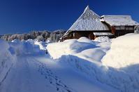 House of Matsunoyama of heavy snowfall Stock photo [809226] Niigata
