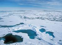 Arctic ice floe Stock photo [812711] Landscape