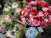 Marche of florist Stock photo [973116] Morning