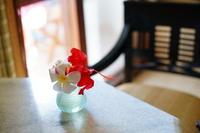 Image of tropical flowers Resort Stock photo [974615] Plumeria