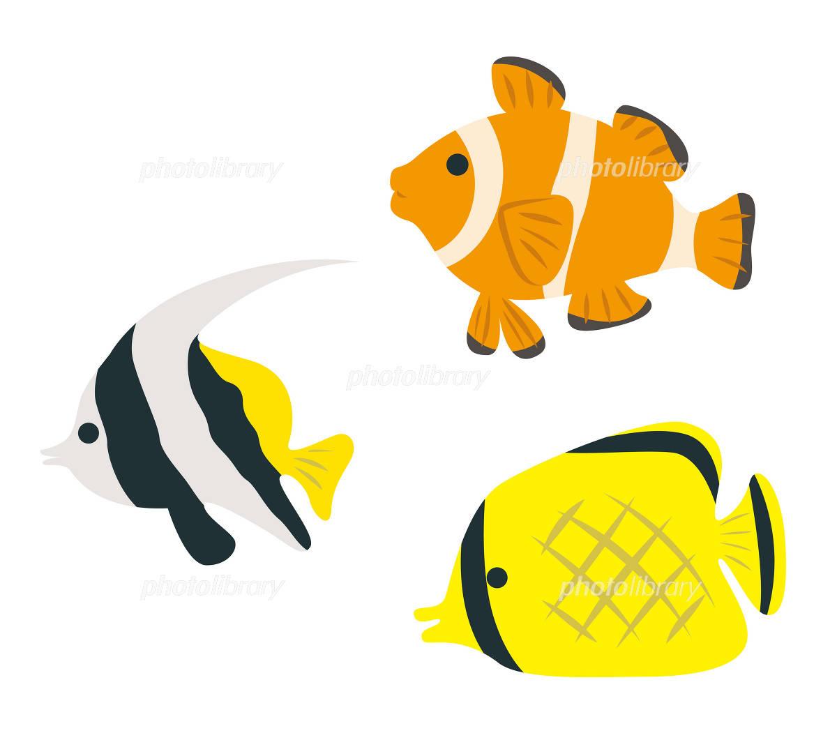 熱帯魚 イラスト素材 ... : メッセージ イラスト 無料 : イラスト