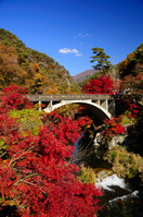 Shosenkyo of autumn leaves Stock photo [1083988] Autumn