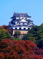 Hikone Castle Stock photo [1085550] Hikone