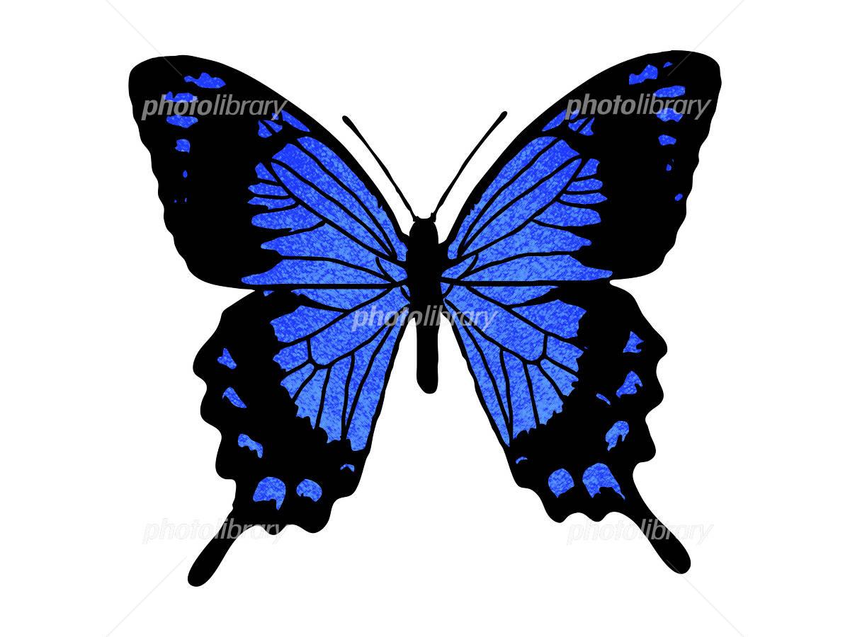 青い蝶 イラスト素材 [ 1198345 ...
