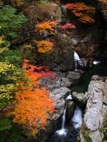 Autumn leaves of Mitarai ravine Stock photo [1197215] Mitarai