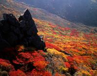 Autumn leaves of Mount Kuj笛 Stock photo [1201333] Oita