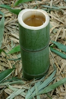 Bamboo stump Stock photo [1290390] Bamboo