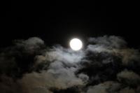 Full moon Stock photo [1380622] Moon