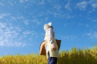Women and agriculture work looking up blue sky in the rice fields Stock photo [1383732] Female