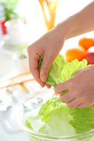 The hands of the women to cook vegetables in the kitchen Stock photo [1383863] Female