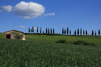 Orcia countryside valley Stock photo [1385558] Italy