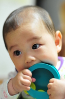Baby eating a tambourine Stock photo [1469668] Baby