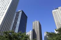 Shinjuku Building group Stock photo [1476528] Shinjuku
