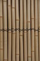 Takekumi Stock photo [1477567] Bamboo