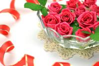 Rose Stock photo [1572981] Rose