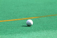 Artificial turf and hockey ball Stock photo [1577929] Field