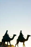 Sunrise camel image Stock photo [1577953] Sunrise