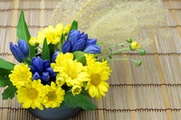 The Chrysanthemum and the gentian and pampas grass Stock photo [1579459] Chrysanthemum