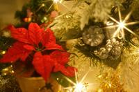 Christmas night Stock photo [1579710] Season