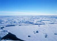 Arctic ice floe Stock photo [1676694] Landscape