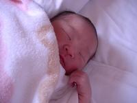 Sleeping face of newborn Stock photo [1685307] Baby